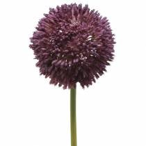 Ornamental allium artificial purple Ø12cm 65cm