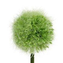 Allium Green L37,5cm 4pcs