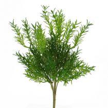 Asparagus pick 26cm