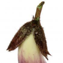 Eggplant 18.5cm violet
