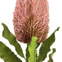 Artificial flower Banksia pink autumn decoration commemorative flowers 64cm