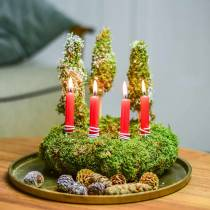 Tree candles red 20 pcs
