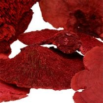 Tree sponge red 1kg