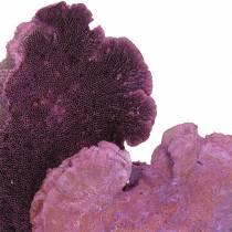 Tree sponge purple white washed 1kg