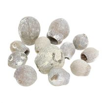 Bellgums whitewashed 2cm - 5cm 500g