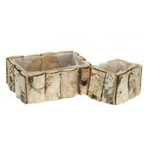 Planter birch 2pcs
