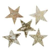 Birchwood stars 6cm 100pcs