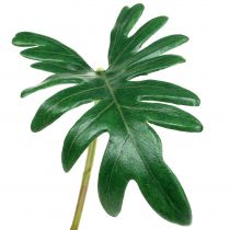 Leaf Philodendron 31cm Green 12pcs