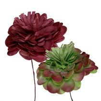 Flower of Foam 7cm Green / Bordeaux 12pcs