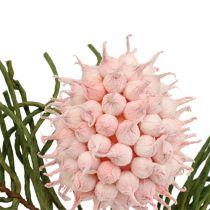 Flowering branch Foam Pink / Green 65cm