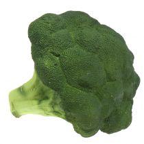 Broccoli Ø16cm