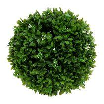 Boxwood ball Ø20cm green