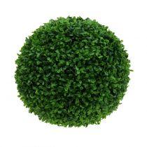 Boxwood ball green Ø30cm