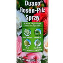 COMPO Duaxo ® Rose Mushroom Spray 400ml