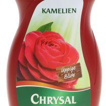 Chrysal Camellia Fertilizer (500ml)