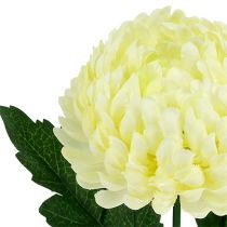 Artificial chrysanthemum cream Ø7cm L18cm