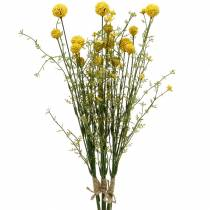 Artificial Craspedia in a bunch of yellow drumsticks 3pcs