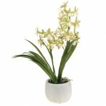 Artificial Orchid Cymbidium in a pot Green H46cm