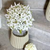 Decorative flower Allium, artificial ball leek, ornamental onion white Ø20cm L72cm