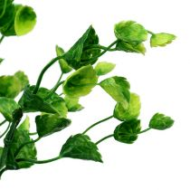 Decoration Mint branch Green L74cm 6pcs