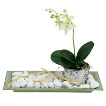 Decorative Tray Green 28cm x 12cm
