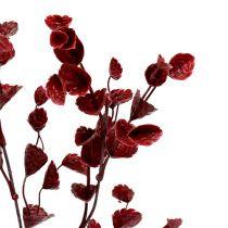 Deco branch dark red 74cm 6pcs