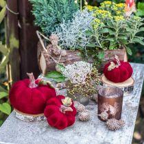 Deco pumpkin red autumn decoration polyresin 15 × 12cm