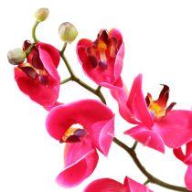 Deco orchid in fuchsia 77cm