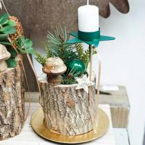 Decorative mushroom wood nature 5cm 6pcs