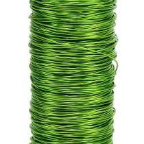 Decorative paint wire Ø0,30mm 30g 50m apple green