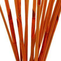 Decorative sticks Elephant Reed Orange 20pcs