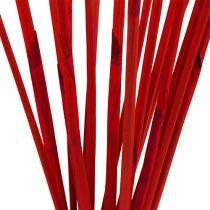 Decorative sticks, Elephant Reed Red 20pcs