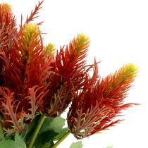 Thistle 20cm red-green 12pcs