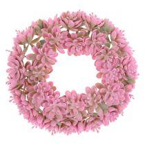 Echeveria wreath Pink Ø18cm 4pcs