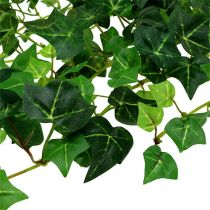 Ivy tendril green 70cm