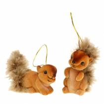 Autumn Deco Squirrel Brown 2 piece set