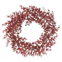 Decorative wreath eucalyptus red Artificial eucalyptus wreath Ø32cm