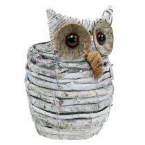 Owl to plant white 23cm