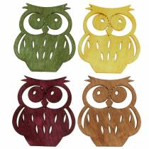 Litter Deco Owls Wood assorted 4cm 72pcs