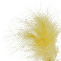 Feathers on sticks Yellow L30cm 12pcs