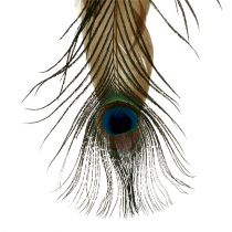 Feather hanger peacock feather 34cm 3pcs