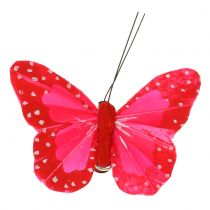 Feather butterflies on clip multicolored 7cm 12pcs