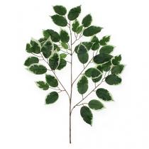 Decorative branch Ficus branch 58cm