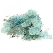 Decorative moss light blue aquamarine reindeer moss craft moss 400g