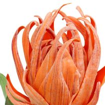 Foam flower Orange 12cm L30cm 1pc