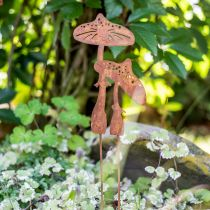 Garden plug mushroom pair Edelrost H49.5cm