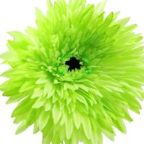 Gerbera artificial green Ø15cm L88cm
