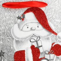 Gift bag Santa 24cm x 18cm x 8cm