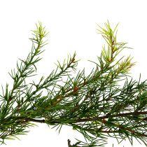 Garland Larch Green L 200cm