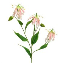 Gloriosa pink-white artificial 84cm 3pcs